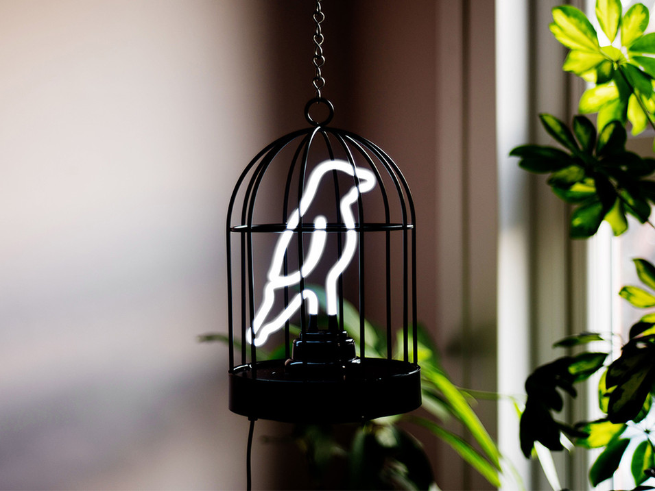 neon birdcage lamp
