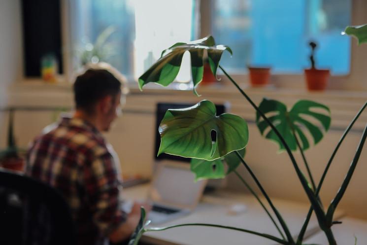 Coworking-Sheffield-Hotdesking-Freelancers.jpg