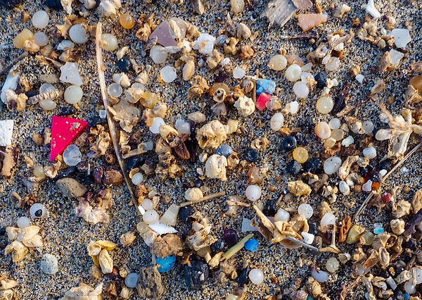 Sea-Changers Sea Pollution.jpg