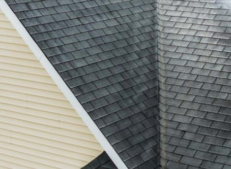 How To Remove Alge from your Roof