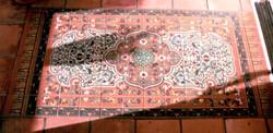 -outdoor rug