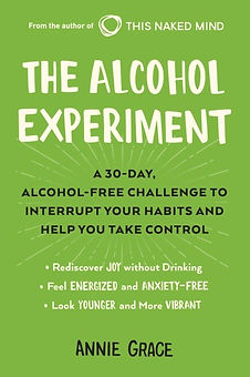 the-alcohol-experiment-1.jpg