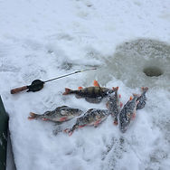 Рыбалка на Селигере Дом рыбака Заречье 3