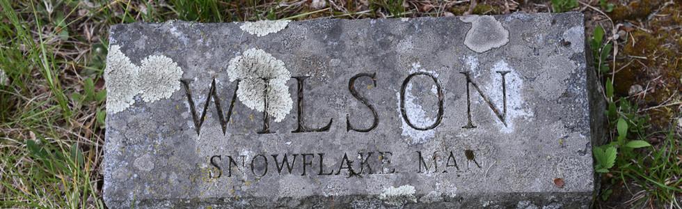 Snowflake Man | Jericho Cemetery
