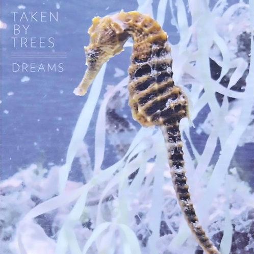 Dreams Vinyl EP
