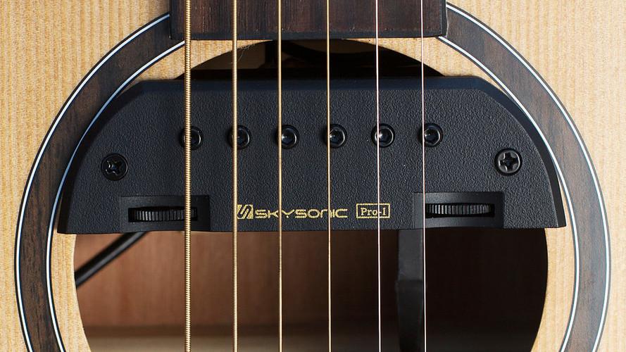 Skysonic Pickup Pro-1