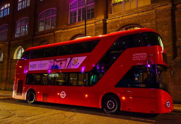 Boris Bus at Night.jpg