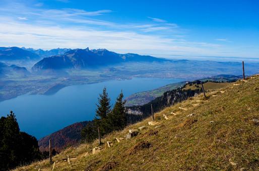 Niederhorn View.jpg