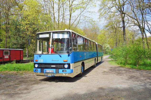 Cottbus Ikarus, 2016.jpg