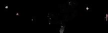 sew bella clear logo.png