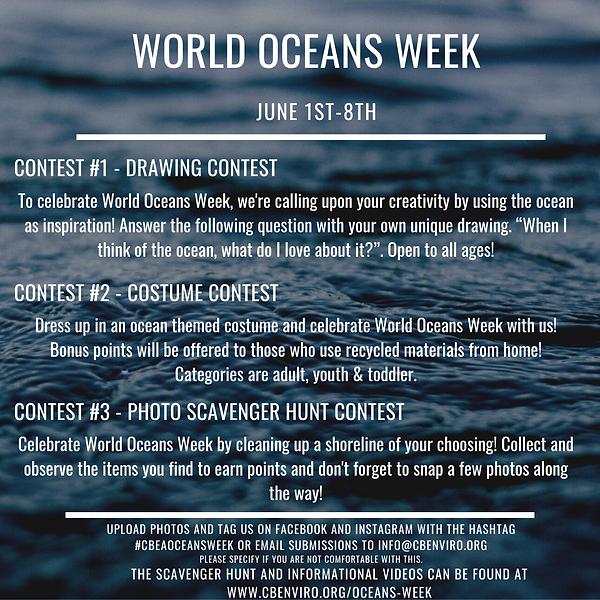 World Oceans Week Poster #3.png