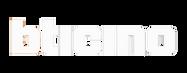 bticino-logo.png