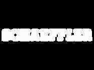 schaeffler-logo-768x768-1.png