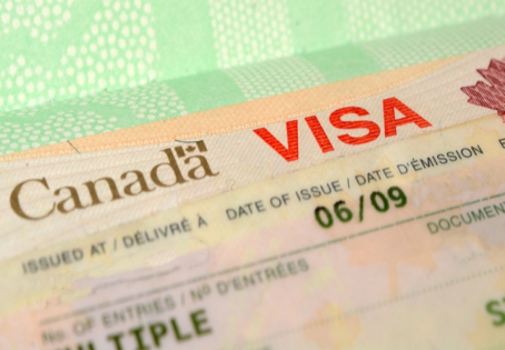 How can you improve the study visa chances for Canada?