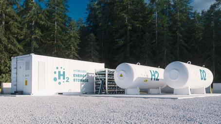 Fuel-flexibility for de-risking the transition to renewable fuels