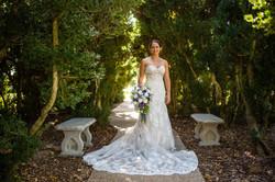 Robson Wedding October 2017 4