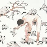 Opossum Ranch