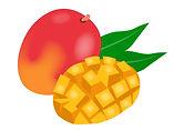 Mango Web Designer