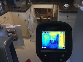 Thermal Imaging Mold Check