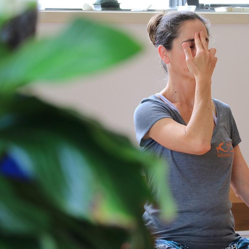 Pranayama & Meditation Level 1 Training Course
