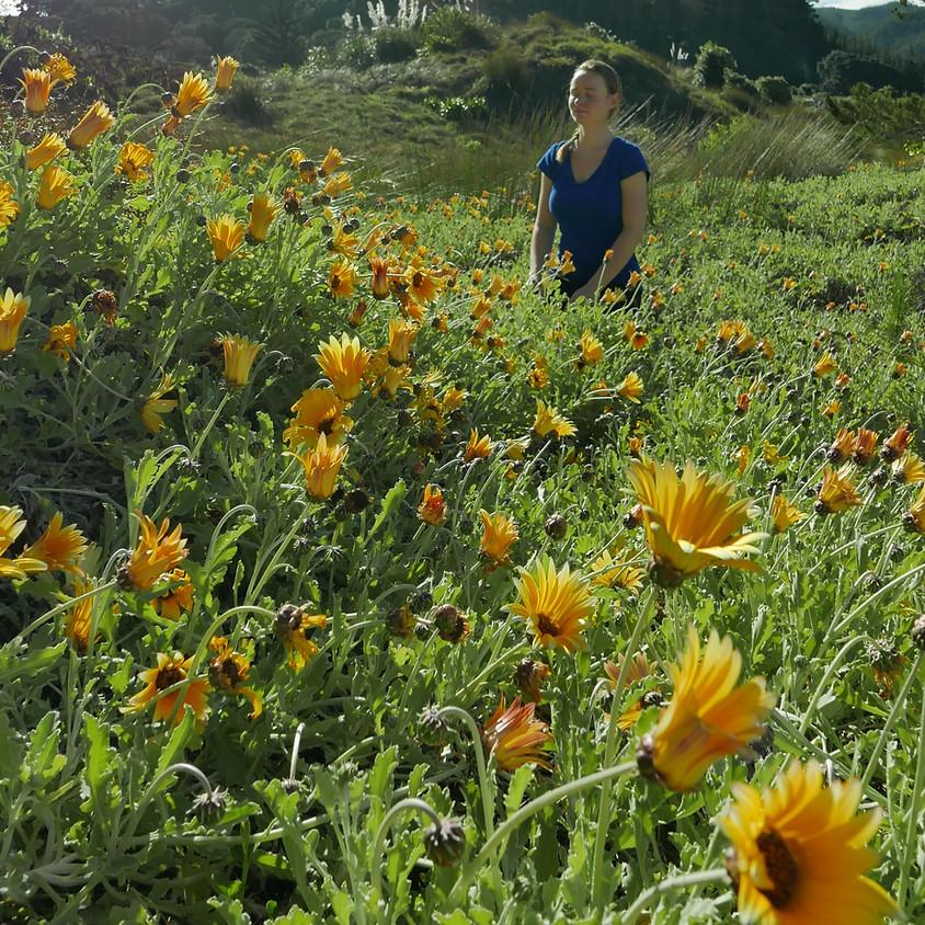 Spring into Yoga Retreat