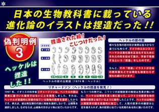 日本の生物教科書に載っている進化論のイラストは捏造だった!!