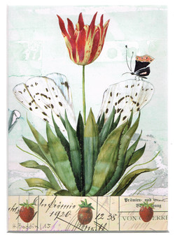 Schmetterlingstulpe