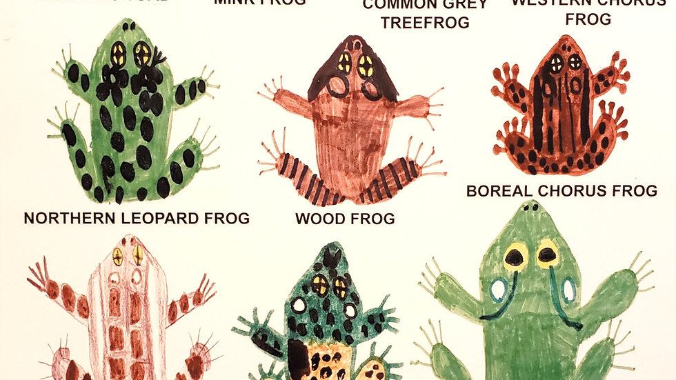 All the Frogs & Toads of Ontario