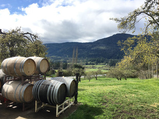 Mount Maxwell & Wine Barrels