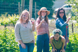 Staff in the vines!
