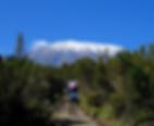 Kilimajaro4.png