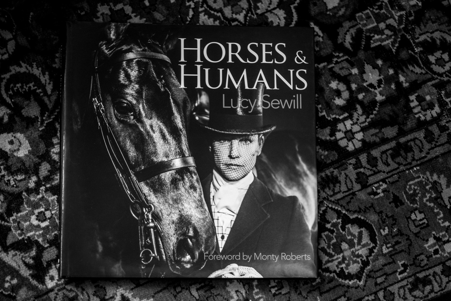 HORSES & HUMANS BY LUCY SEWILL