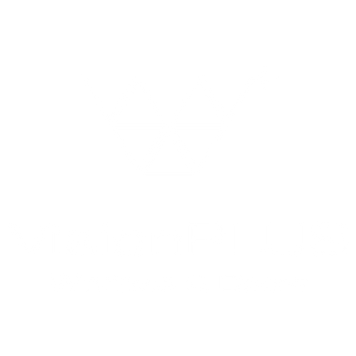 Vision Plus_Brand Guidelines-2020 05-21.