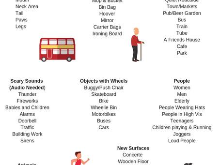 Socialisation & Habituation Checklist