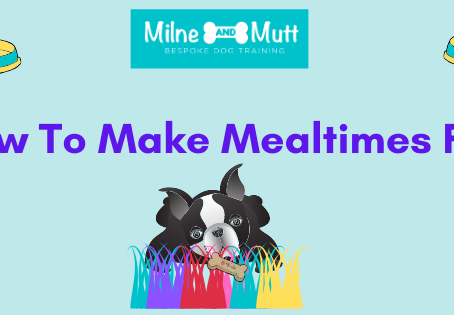 How To Make Mealtimes Fun