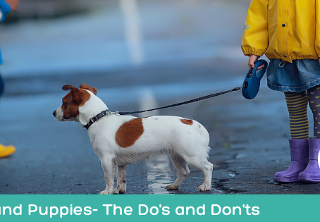 Kids and Puppies- The Do's and Don'ts