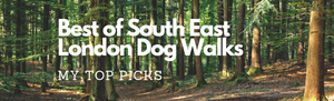 Best of South East London Dog Walks