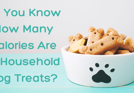 Do You Know How Many Calories Are in Household Dog Treats?