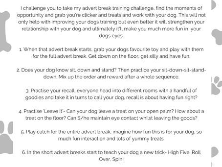Advert Break Training Challenge