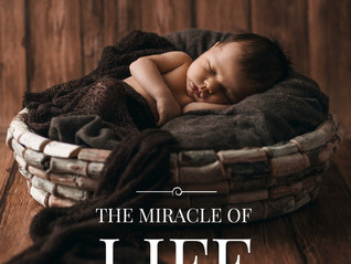 THE MOST IMPORTANT AND MIRACULOUS PREGNANCY