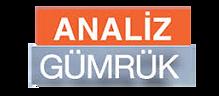 analiz_gumrük_logo.png