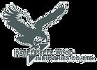 Isaree steel woods logo transparent bg.p
