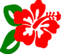 hibiscus.png