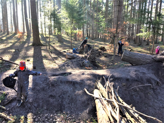 森へピクニック