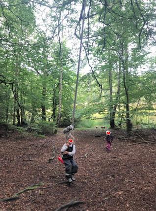 森の幼稚園・5歳児クラス