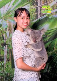 コアラ抱っこ