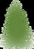 cedar-cone-clipart-15_edited.png