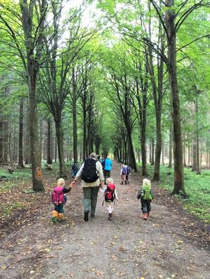森の幼稚園の帰り道