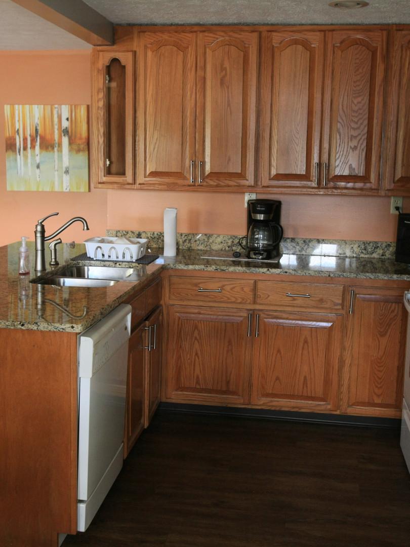Lakeview Kitchen 4.jpg