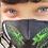 Thumbnail: Kids Snakes